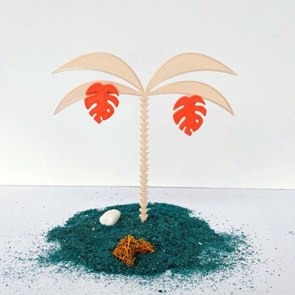 Monstera coral